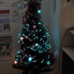 クリスマスツリーの季節