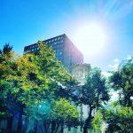 アロマセラピー学会にて札幌出張