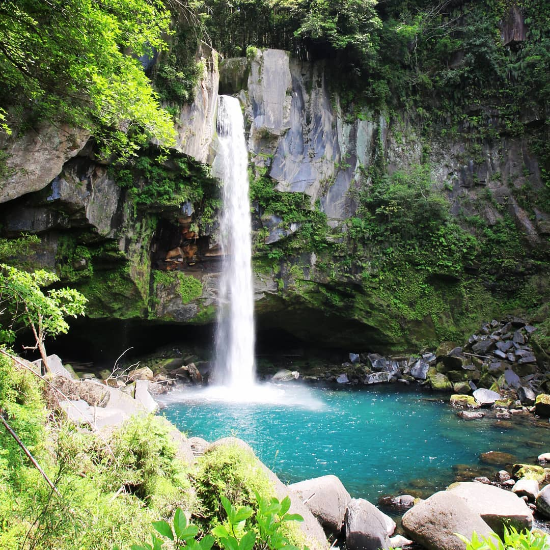 霧島にある犬飼滝。その昔、坂本龍馬が妻お龍と日本初の新婚旅行として霧島へを訪れた際、この滝にも立ち寄ったそうです。和気神社から長い山道を下ってたどり着く滝、その清涼感と迫力に圧倒されます。。。ちなみに和気神社、平安時代に和気清麻呂が道鏡から逃れて暮らしていたことに由来しています。歴史ロマン漂うパワースポットです!