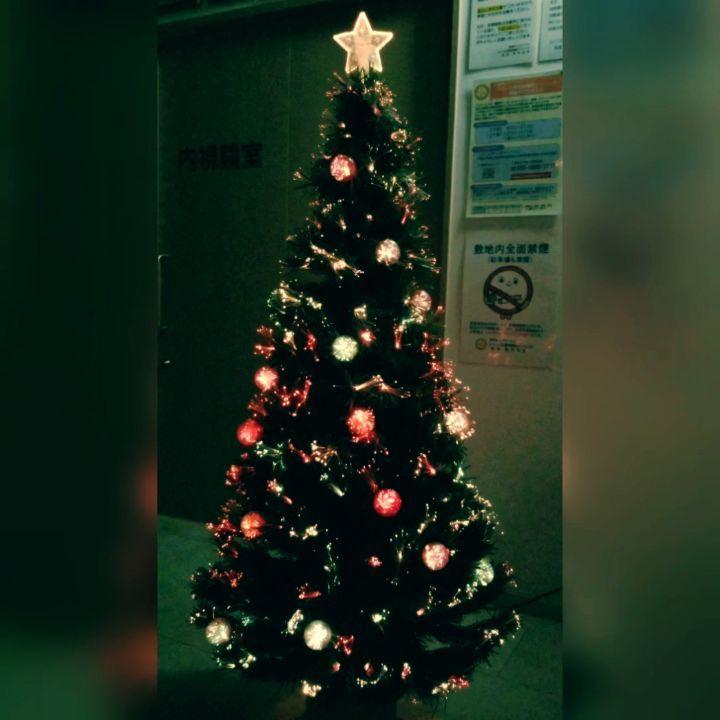 クリスマスツリー点灯式。毎年恒例の待合室に飾るクリスマスツリー、今年もスタッフが綺麗に設置してくれました 診察終了後、スタッフが事務室で後片付けに追われる中、院長がこっそり点灯式。。。暗闇に光るツリーで心癒されます